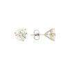 Diamond Earrings Style #: PP3274-04-03-02
